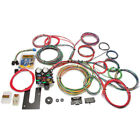 Painless Performance Products 10102 21-Circuit Classic Customizable Chassis Harn