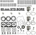 Yamaha SX 700 Viper ER MT 69 mm STD Bore SPI Moly Pistons Bearings Gaskets Seals