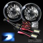 """7"""" Round H6014 Black Crystal Composite Projector Headlights/10000K Xenon HID Kit"""