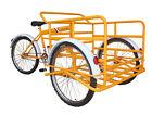 Cargo Tricycle / Bicycle / Trike Bike / Adult Trike
