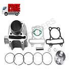 HAMMERHEAD TWISTER 150 150CC GO KART TOP END ENGINE CYLINDER REBUILD KIT NEW