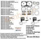 2007 2008 2009 Arctic Cat 800 Sleds 85 mm STD Bore Pistons Bearings Gaskets
