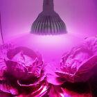 48W E27 48 SMD 5730 LED Plant Grow Light Indoor Greenhouse Hydroponics Grow Box
