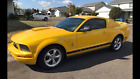 2006 Ford Mustang Pony Ford Mustang, 2006