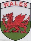 Wales Welsh Dragon Flag Vinyl Car Window Sticker