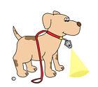 DOG WALKING LIGHT-Micro Light Keychain Flashlight LED - Super Bright - Wide Beam