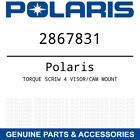 OEM Polaris Torque Snowmobile Helmet Screw 4 Visor / Cam Mount