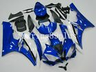 Blue White ABS Injection Mold Plastic Fairing Kit for Yamaha YZF R6 2006 2007
