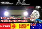 MVA PLUS HB4 12v 100w Plasma 7500K Halogen Globes with HD Ceramic Wiring Harness