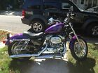 2009 Harley-Davidson Sportster  2009 Purple Harley Davidson Sportster 883L