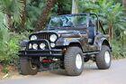 1978 Jeep CJ  1978 Jeep CJ 5