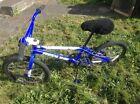 Redline Raid CB 20 Kid's Blue BMX Bike
