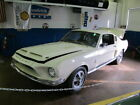 Shelby GT500  Mustang Shelby GT500 2 owner long term storage