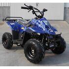 RPS 110CC RAIDER 6 KIDS ATV, AIR COOLED, SINGLE-CYLINDER, 4-STROKE
