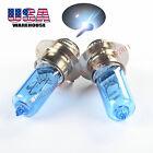 For Honda Rancher Super White Xenon 12V 35W Headlight Bulbs ATV 2000 01 2002 x2