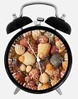 "Sea Shells Alarm Desk Clock 3.75"" Home or Office Decor W157 Nice Gift"
