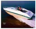 1992 Chris Craft 228 Concept-- With Trailer-- Priced over 2k under NADA