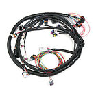 Holley 558-100 Dominator EFI 4BBL TBI Main Harness Only