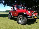 1989 Jeep Wrangler  '89 Jeep Wrangler YJ body-off rebuid, V8 conversion