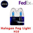 2x New Halogen Fog Light Bulbs H10 Super White Xenon HID 5000K DRL