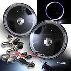 "WHITE LED HALO FOR JAP CAR! 7"" H6014 H6024 BLACK HEADLIGHTS BI-XENON HID 8000K"