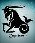 Sticker zodiac astrological astrology transparent car moutain sea goat capricorn
