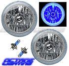 "7"" COB LED Blue Halo Angel Eye H4 Headlamp Headlight Halogen Light Bulb Pair"