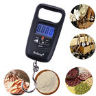 50KG Double Precision Electronic Fishing Hook Pocket LCD Digital Scale Hook Type