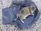 1970 Arctic Cat 340 PANTHER snowmobile parts: SEAT COVER w snaps