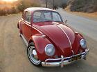 1965 Volkswagen Beetle - Classic deluxe 1965 volkswagen beetle Classic VW