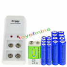 8x AA 3000mAh + 8x AAA 1800mAh Rechargeable Battery+ 1x BTY 9v 300mAh + Charger