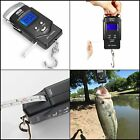 110LB LCD Weight Scale Small Digital Portable Weighing Hand Held Big Fish Scales