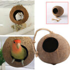 D451 F03D Coconut Shell Bird Nest House Cage Feeder Toy Pet Parrot Budgie Conure