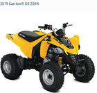 2019 Bombardier DS250 Yellow
