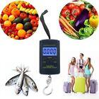 Next-shine Electronic Digital Hanging/Fish/Luggage/Kitchen Scale 0.01 lb/0.005kg