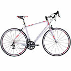 Focus Izalco Ergo 2.0 Road Bike // 56 Large // White/Grey