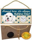 Maltipoo CLOCK-Around here it's always (Dog Breed) Time-Hang or Easel Back