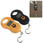 Fashion 50Kg Hanging Scale Fishing Digital Pocket Weight Scales Random Color