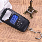 110lb/50kg Digital Scale Electronic Scale Fishing Gear Tool with Backlight LCD