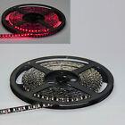 Red 5M 500CM 600 SMD Flexible Strip 3528 LED Light Waterproof Black PCB Car 12V