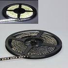 White 5M 16.4FT 600 LEDs Flexible Strip 3528 LED Light Waterproof Black PCB 12V