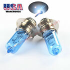 For Honda 400 Pilot 350 Odyssey White Xenon Headlight Bulbs ATV 1985 89 1990 x2