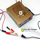 Intelligent 12V/24V 100AH Electric Car Dry&wet Battery Charger Pulse Repair