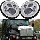 2x 60W 7inch Led Headlights Bulb Chrome for Kenworth T2000 98-10 Trucks 6500K