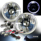 "WHITE LED HALO FOR EURO CAR! 7"" H6014 H6024 CLEAR HEADLIGHTS BI-XENON HID 8000K"