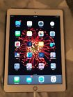 Apple iPad Air 2 Gold 64GB Wi-Fi - Bundle with Magnetic Case