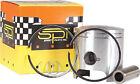 SPI OEM Series Piston Kit / Polaris - 09-719