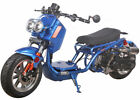 ICE BEAR NEW MADDOG 49cc FULL SIZE Motor Bike Gas Scooter Moped 100%Street Legal