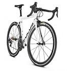 2018 Focus Izalco Max Ultegra Carbon Fiber Road Bike 50cm Retail $4000