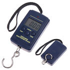 40Kg x 10g Digital Fishing Hanging Luggage Weight Weighing Hook Pocket Scale US